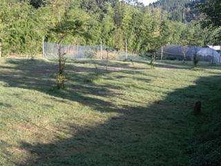 山鳥の森 プール下サイト.JPG